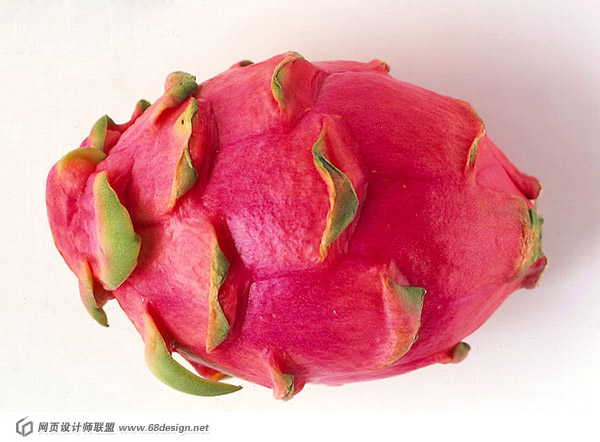 Dragon fruit 21418
