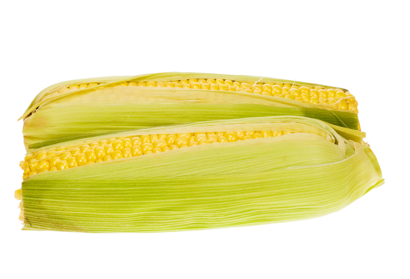 High-resolution images of corn 24689