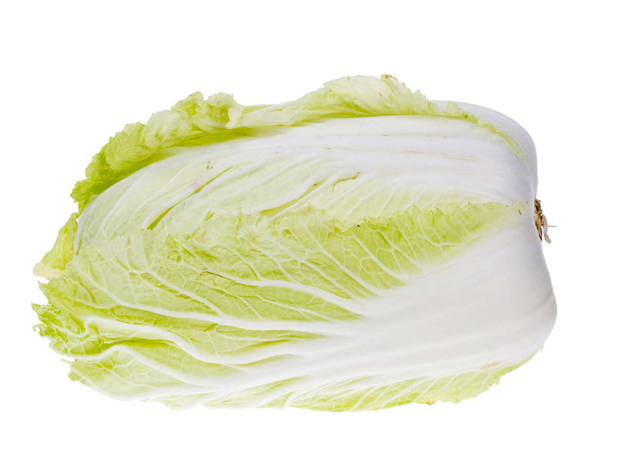 Cabbage Stock Photo 24861