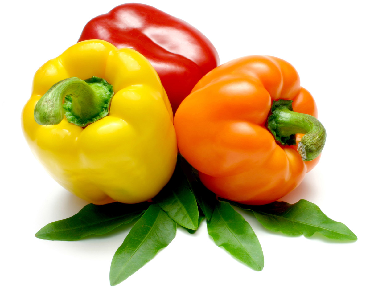 Bell pepper Stock Photo 24975