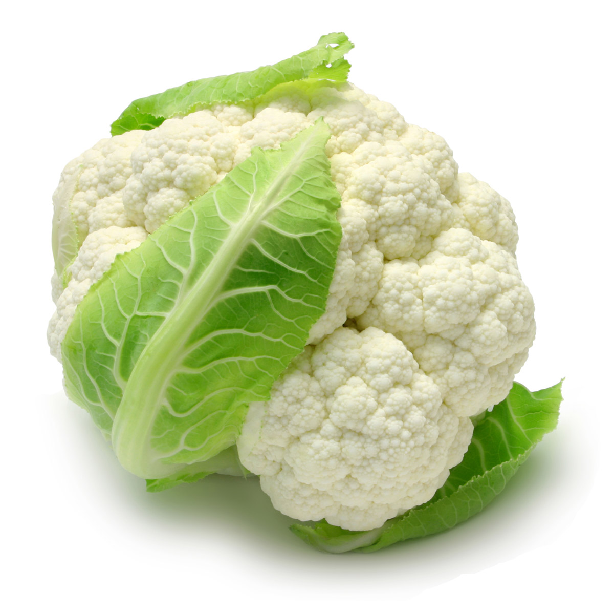 Cauliflower picture material 25011