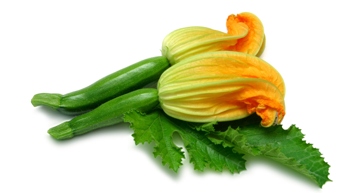Pumpkin with flowers stock photo 25098