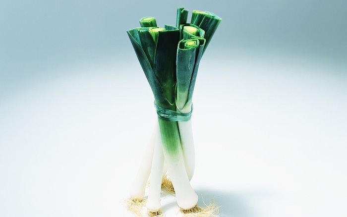 A bundle of leeks 25463