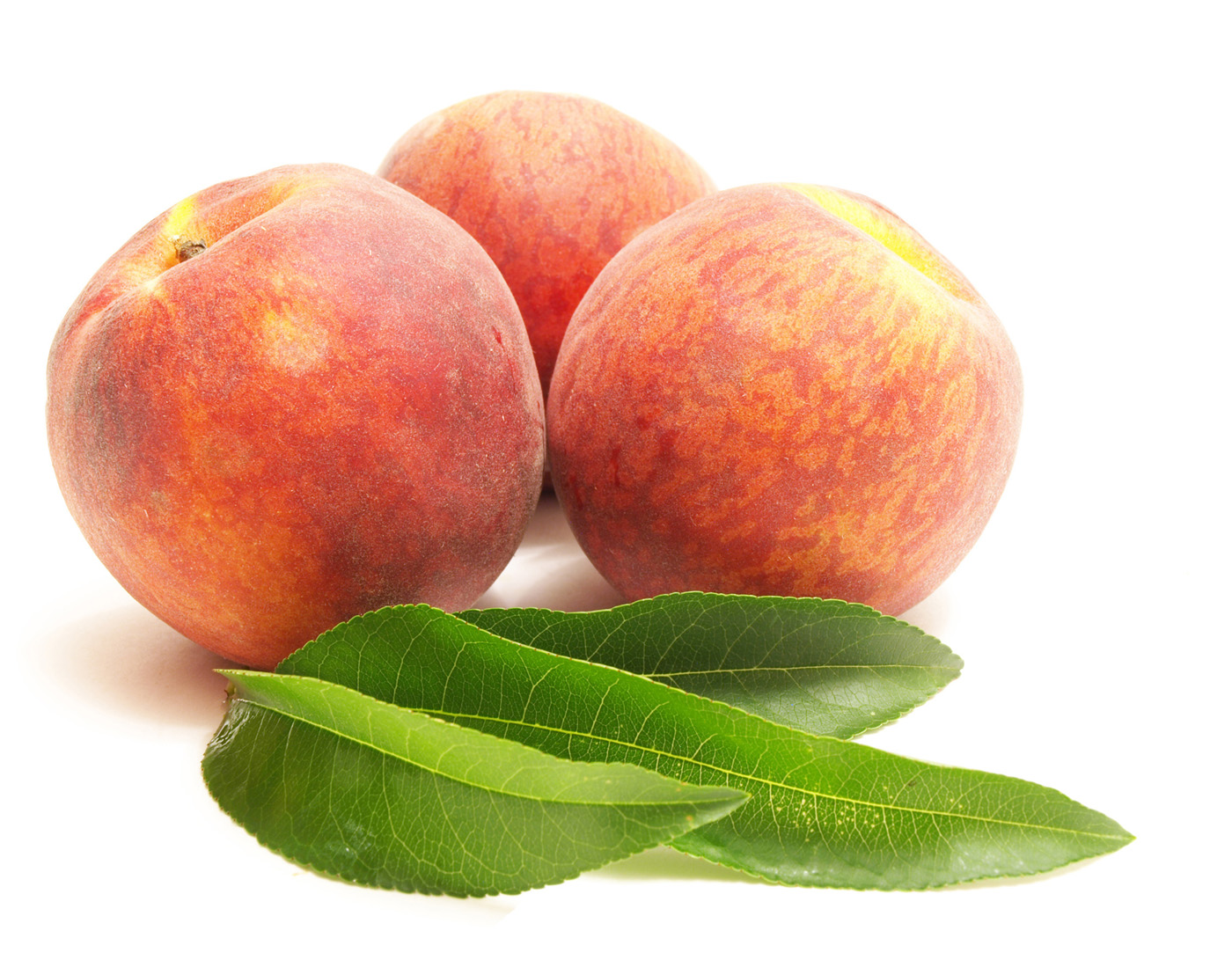 High Definition peach photo 25583