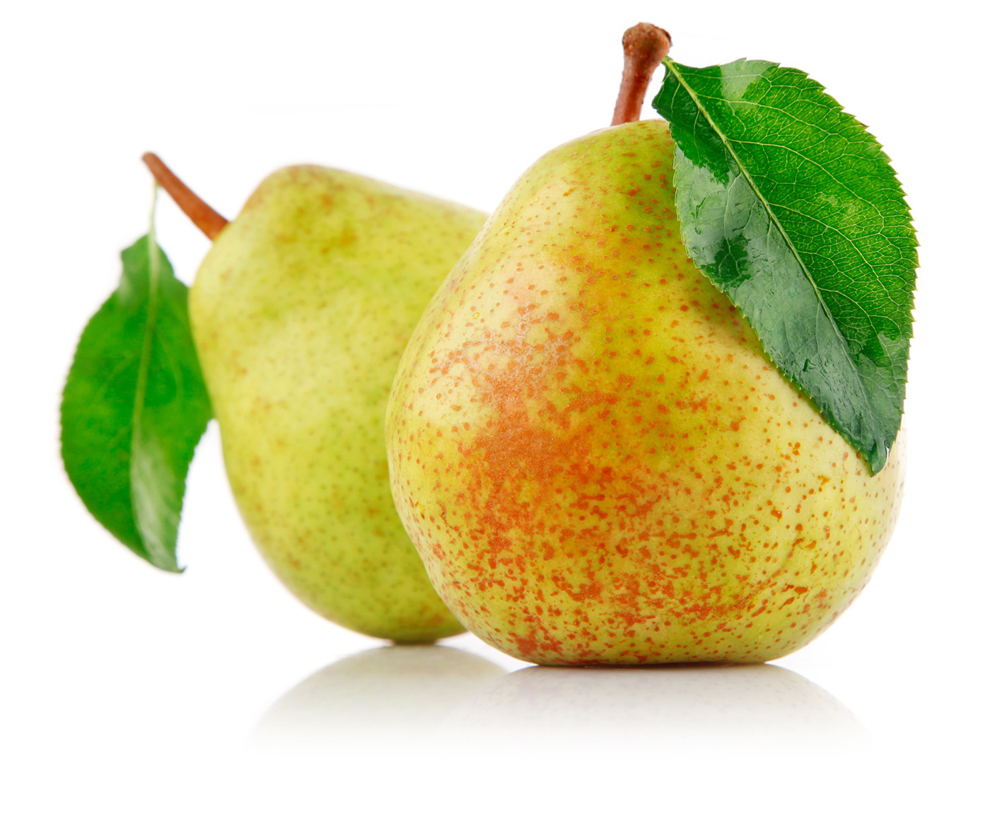 Large pear 29585