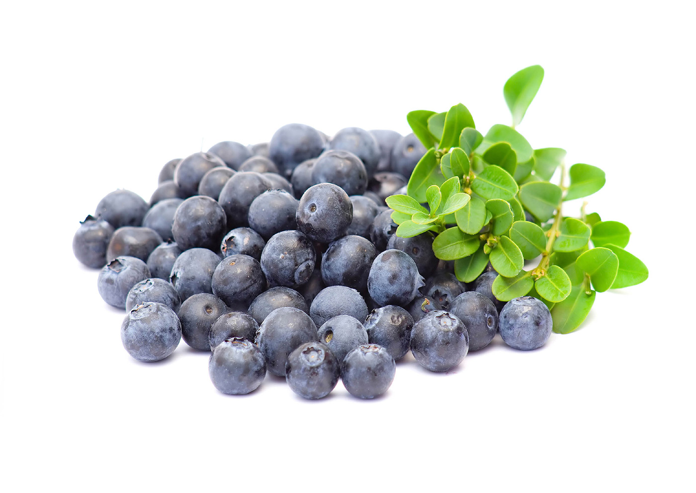 Blueberries 29961