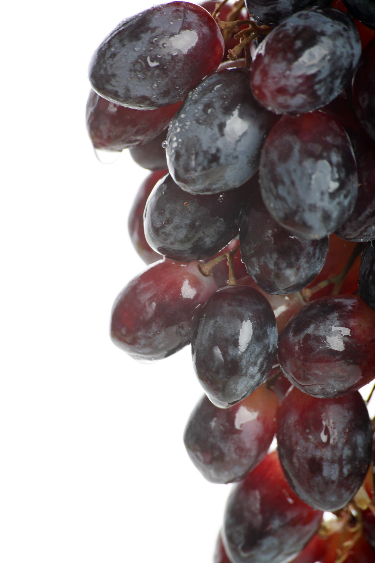 High-resolution photo grape 8046