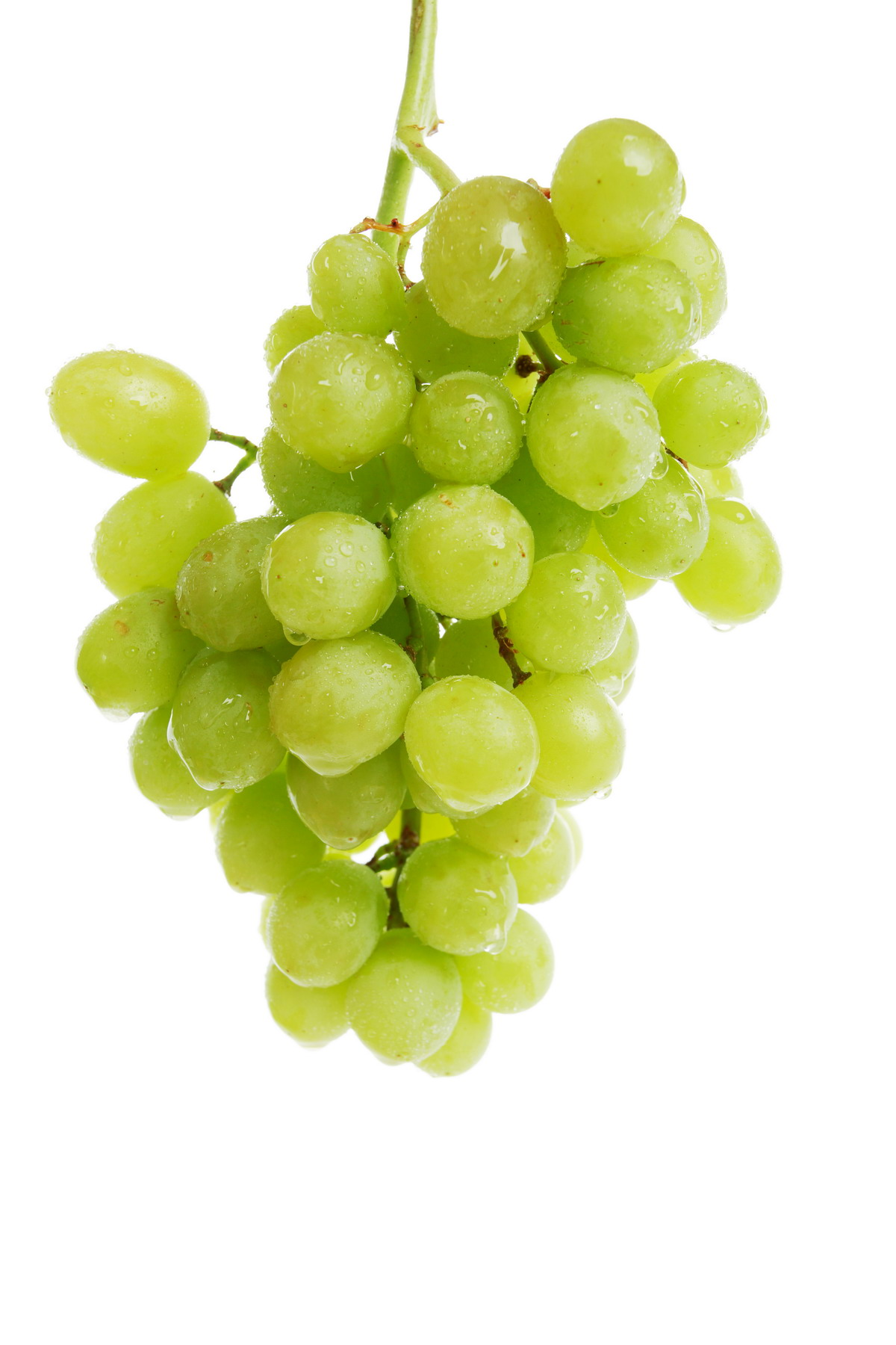 High-resolution photo grape 8158