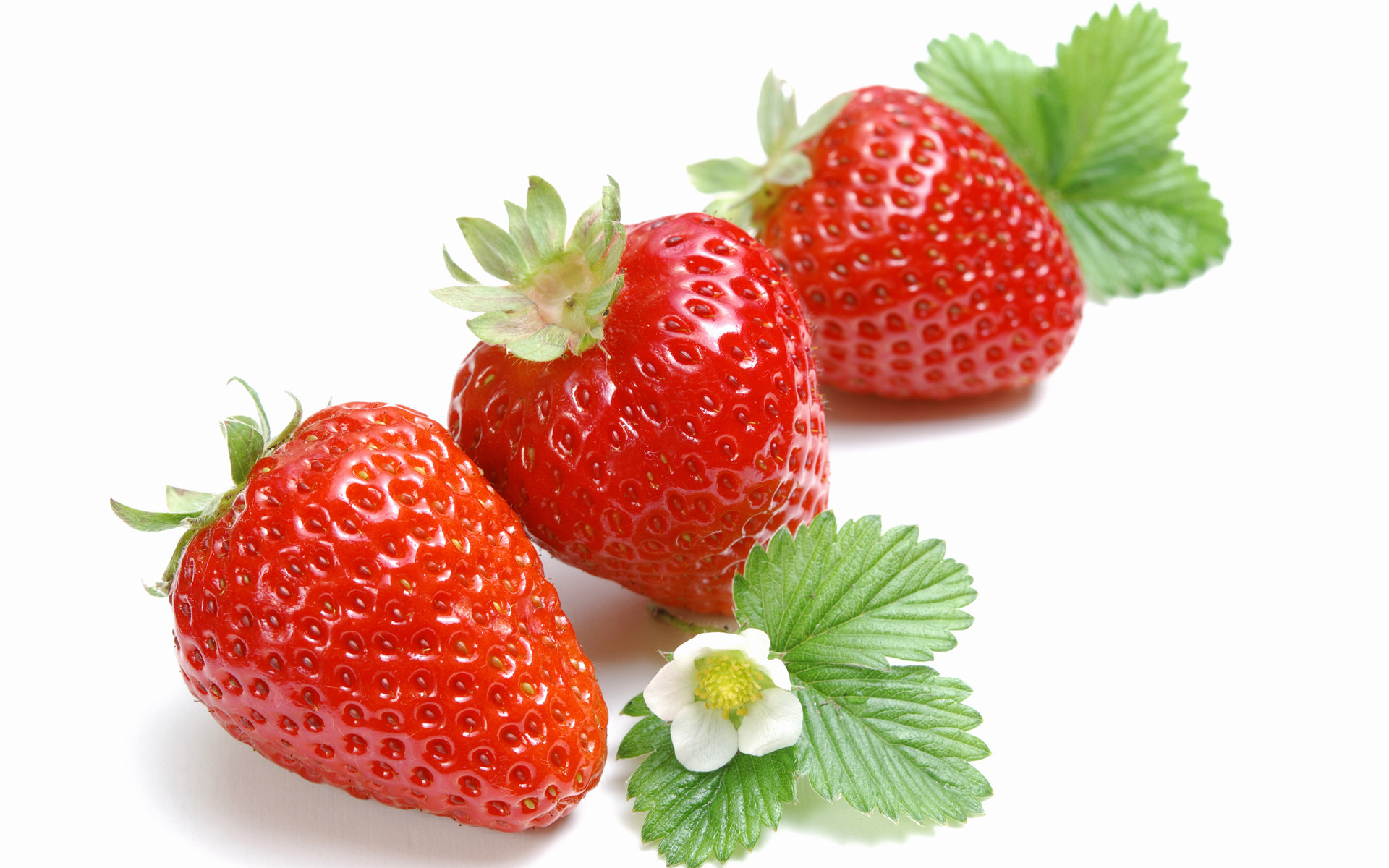 High-definition material Strawberry 1677