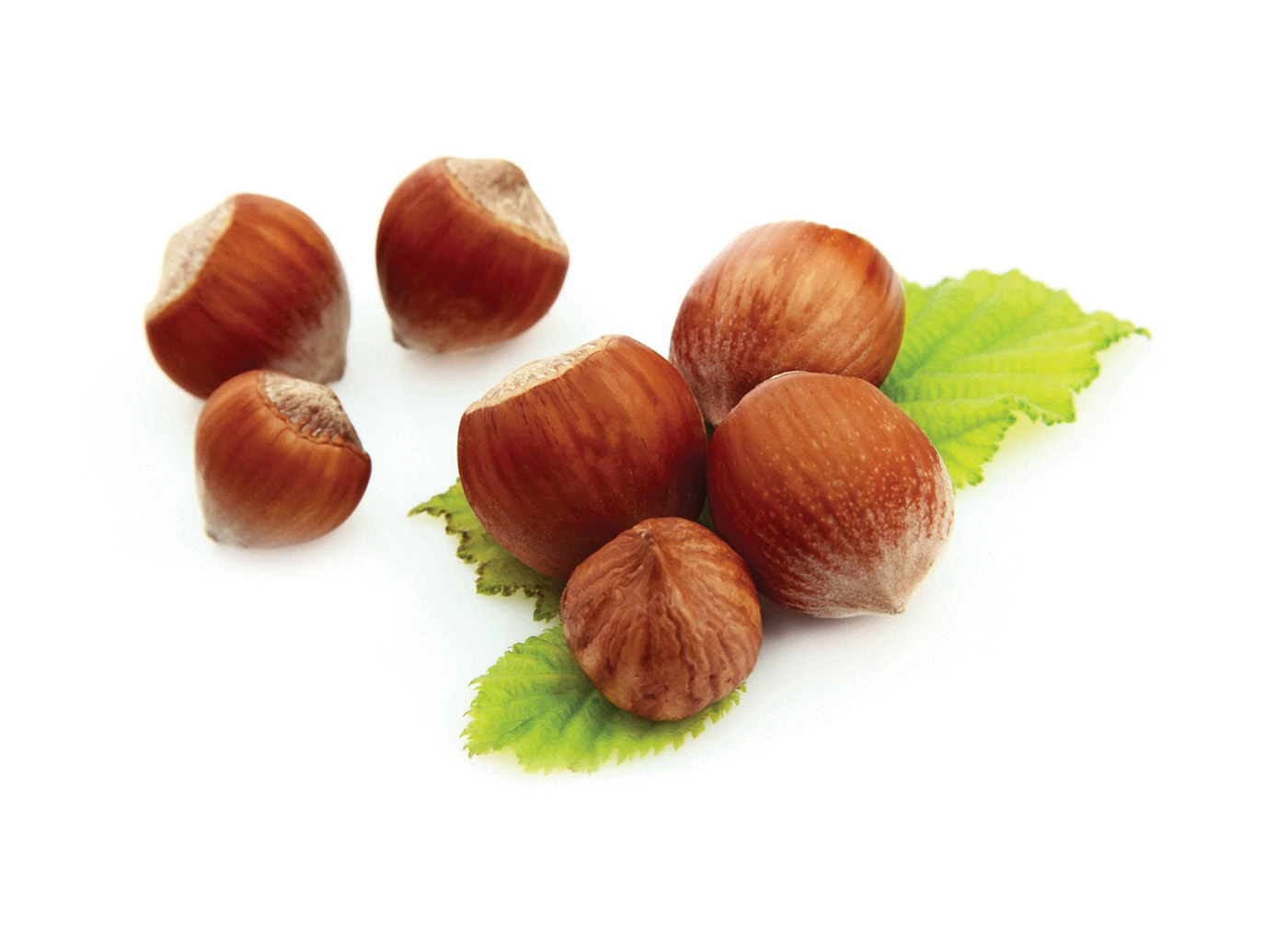 Chestnuts 29792