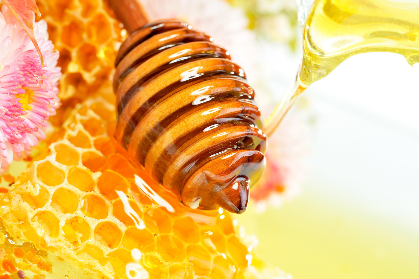 Pictures of liquid honey and the honeycomb 3637
