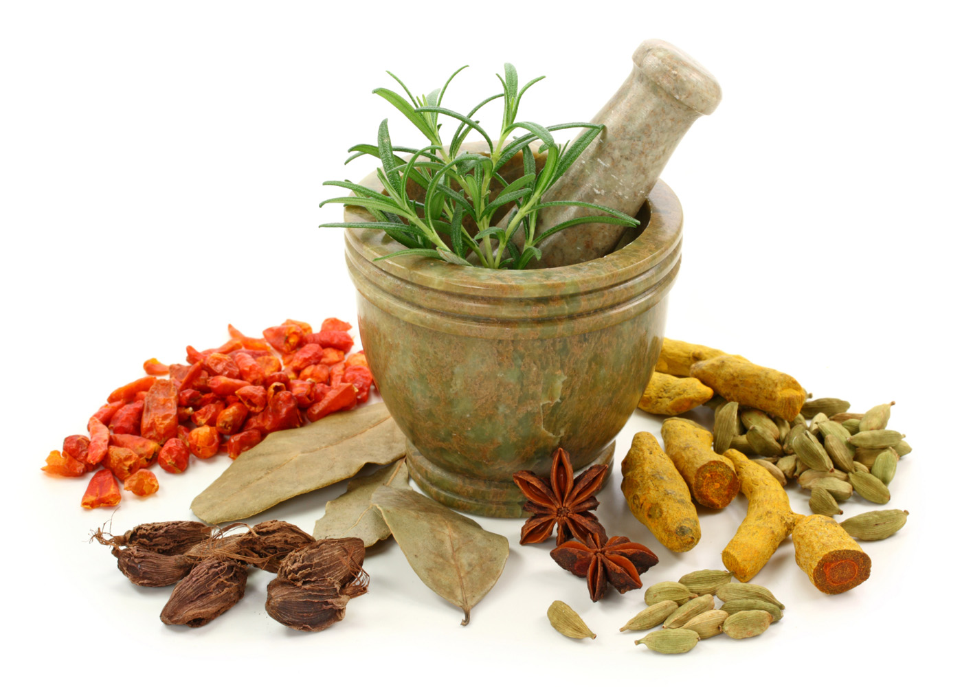 Pictures of various spices 6231
