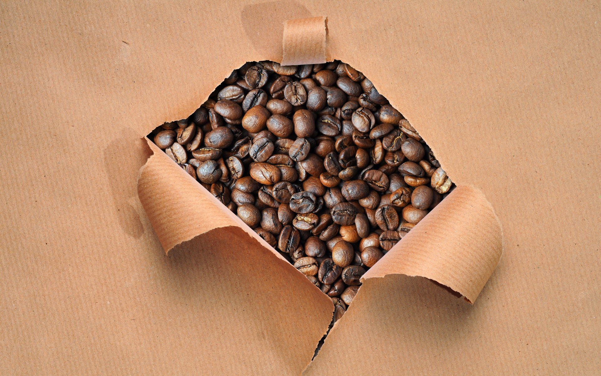 Coffee and coffee beans close-up 15045