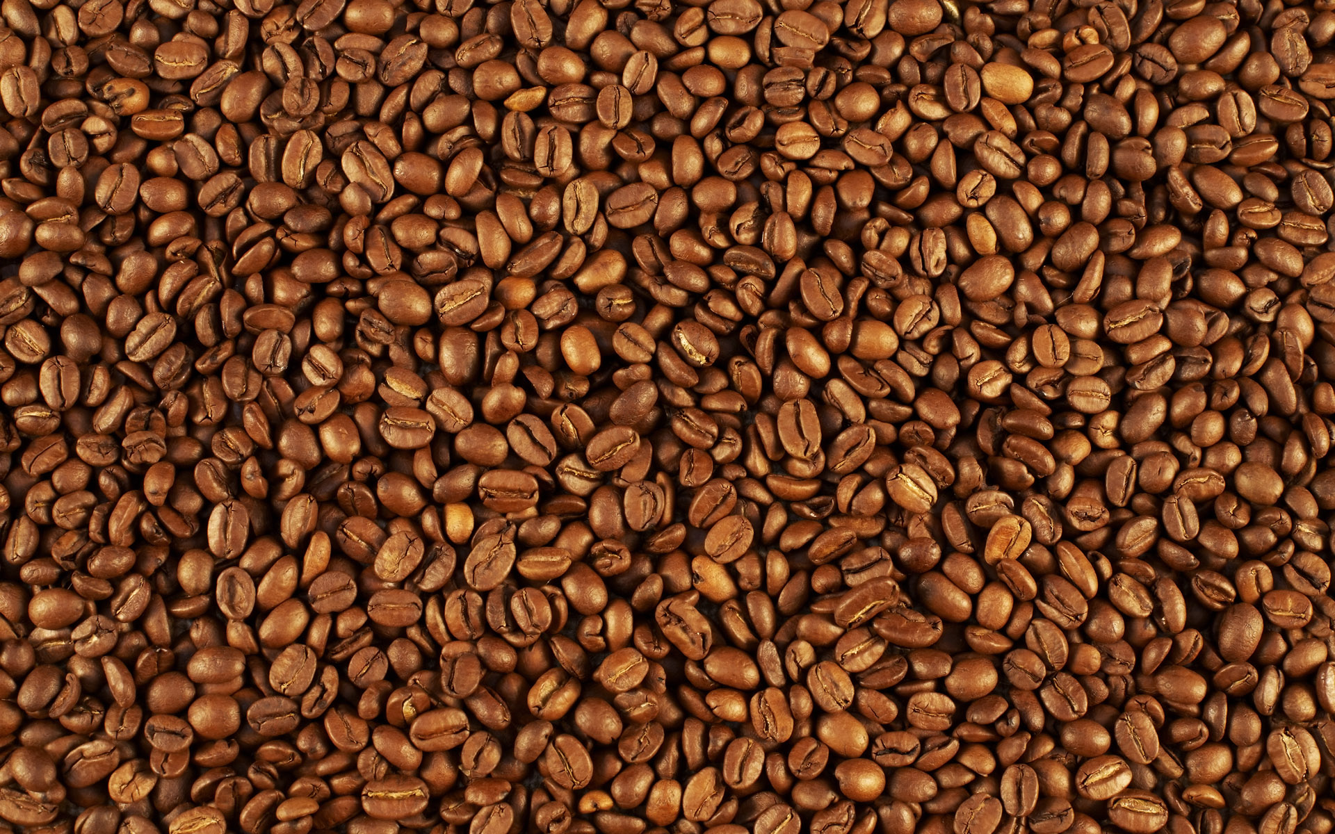 Coffee and coffee beans close-up 15786