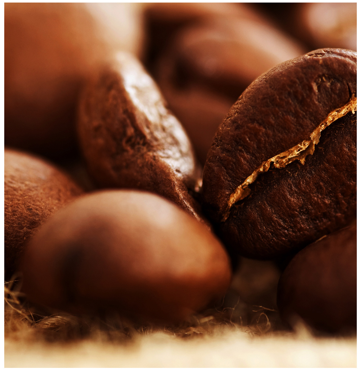 Coffee and coffee beans 18805