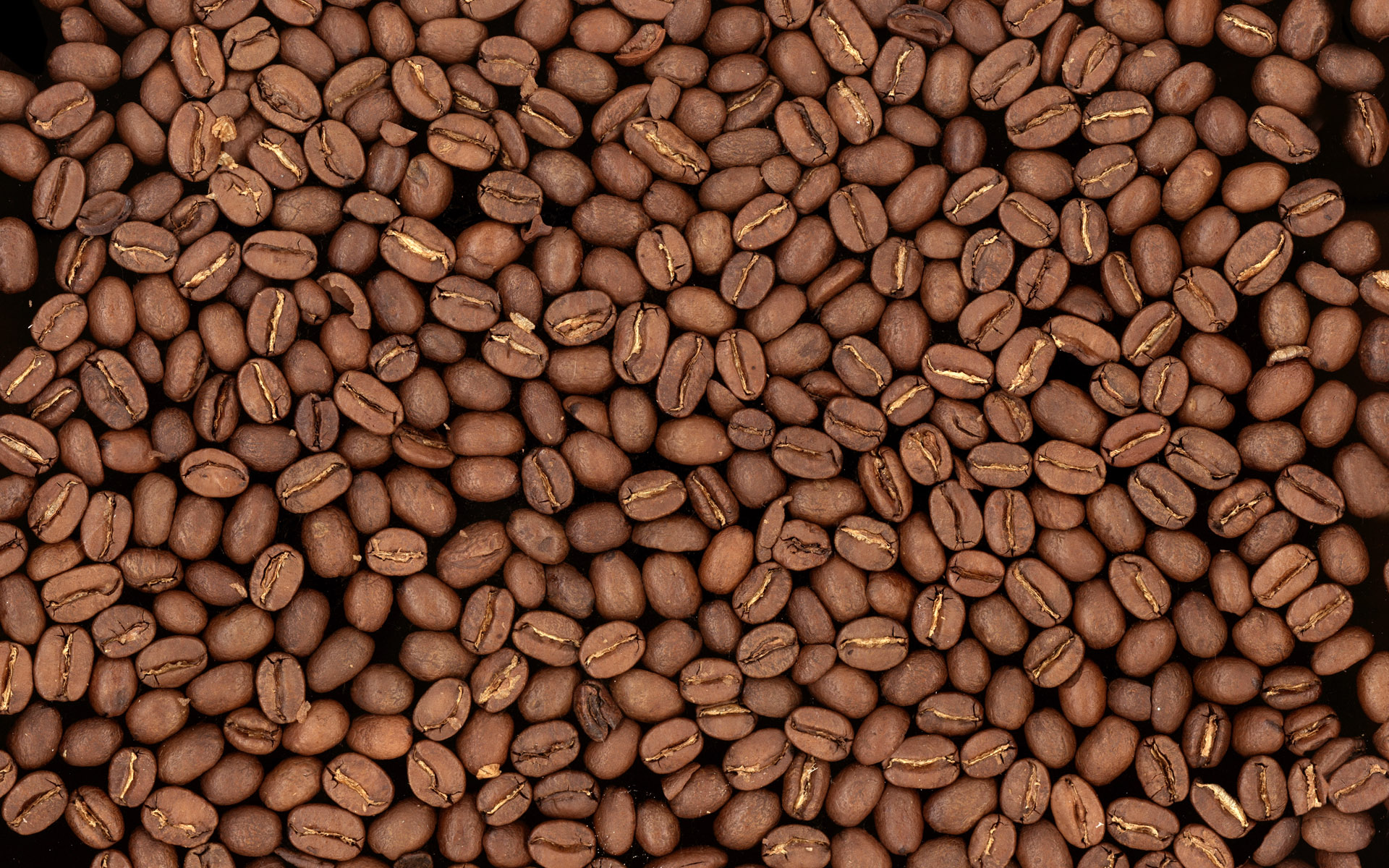 Coffee wallpaper high definition 8049