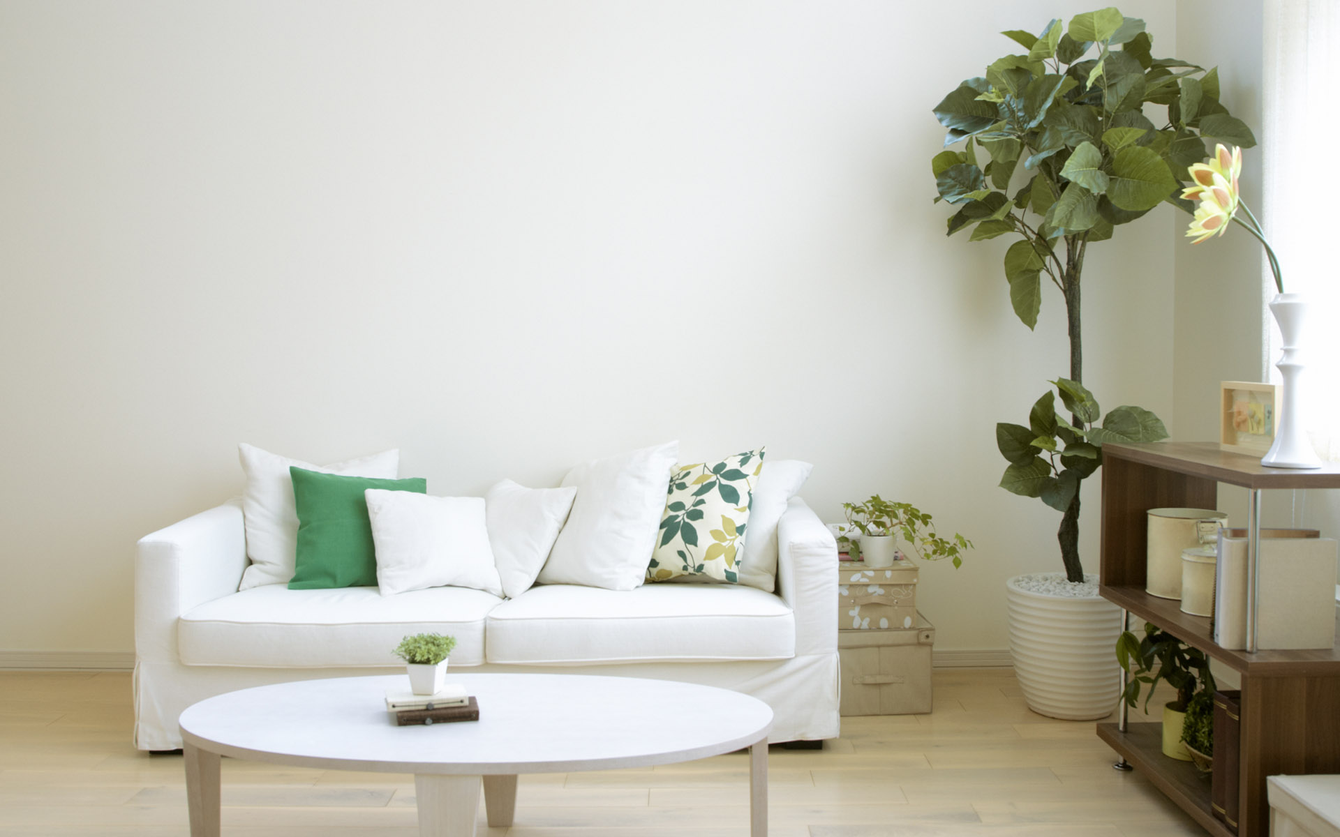 Home Still Life 25183high Definition Living Room Photo 24157 Indoor
