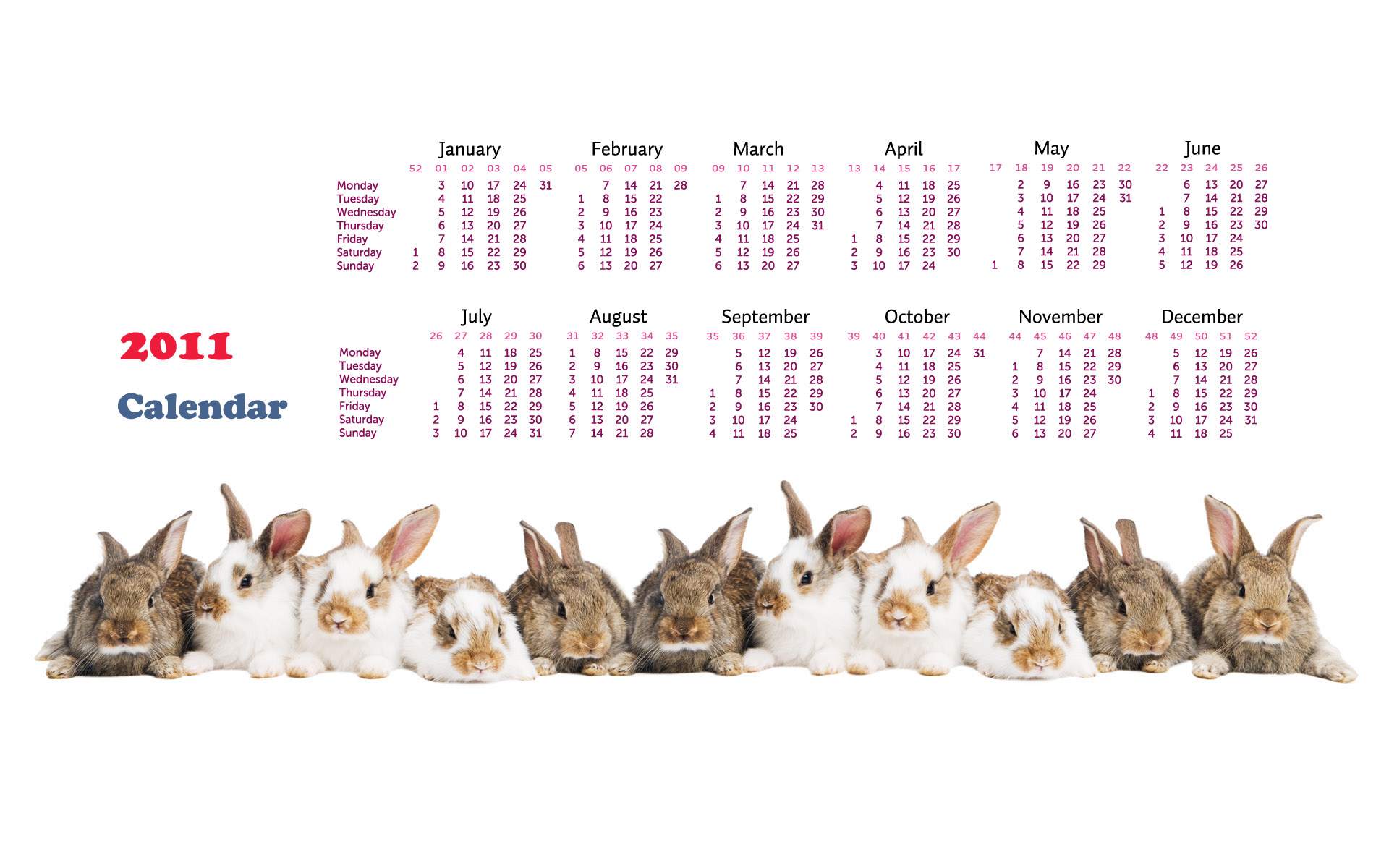 Calendar Year of the Rabbit 14172