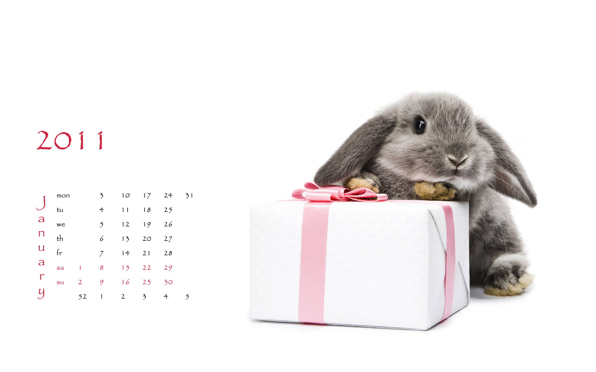 Calendar Year of the Rabbit 14519