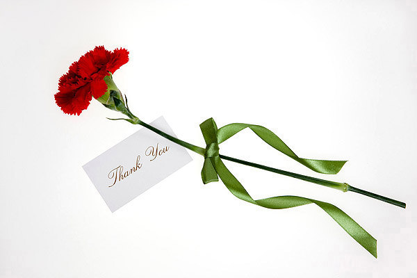 Flowers and cards 10829