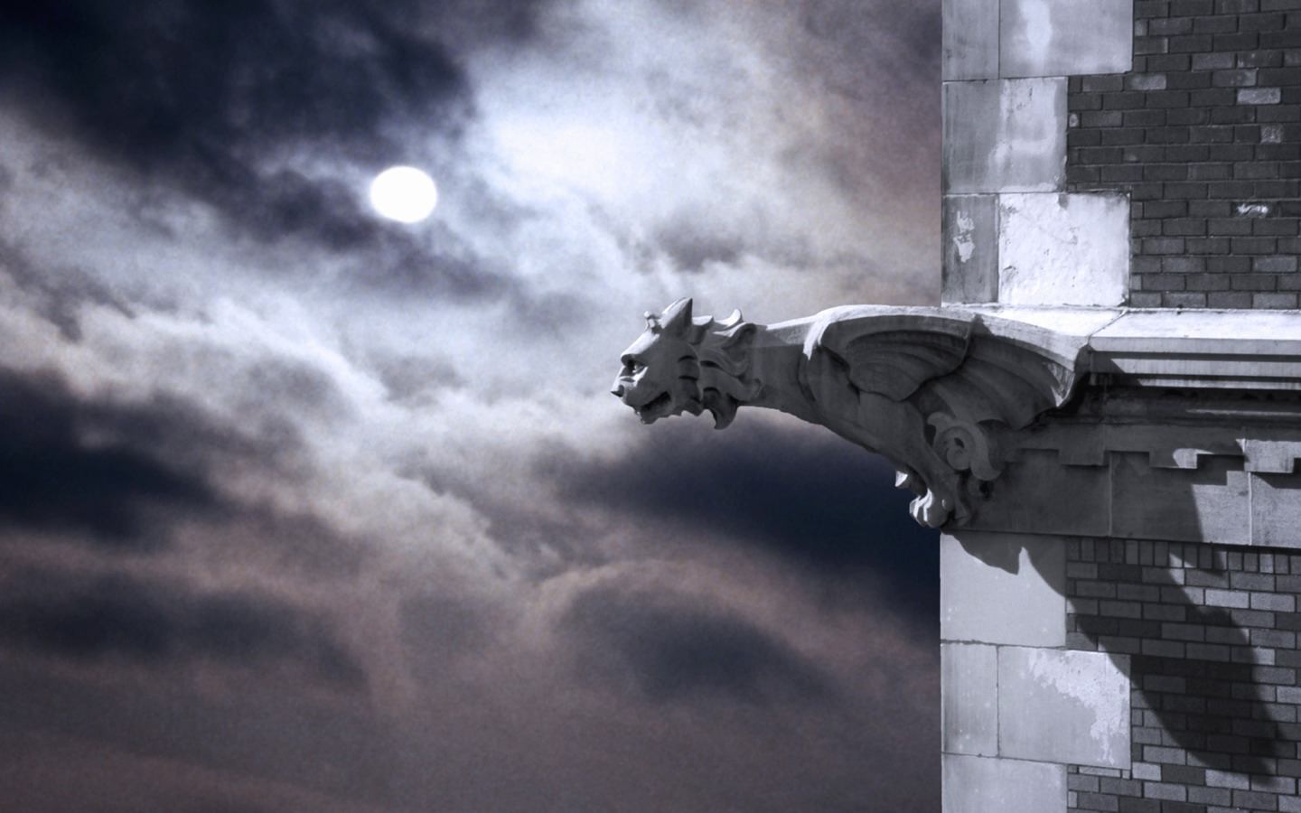 Gargoyle under the moonlight 833