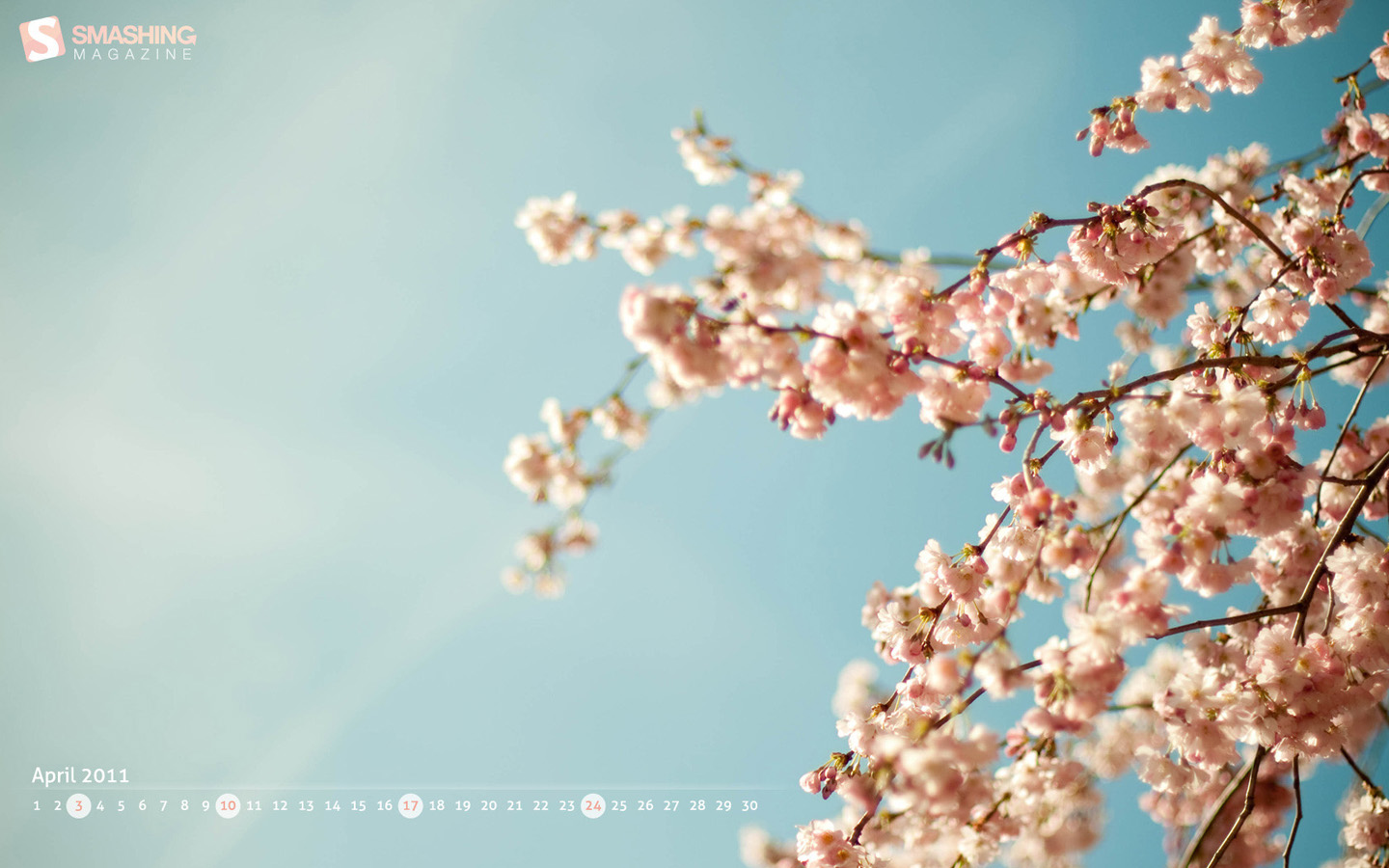 In January Calendar Wallpaper 29218