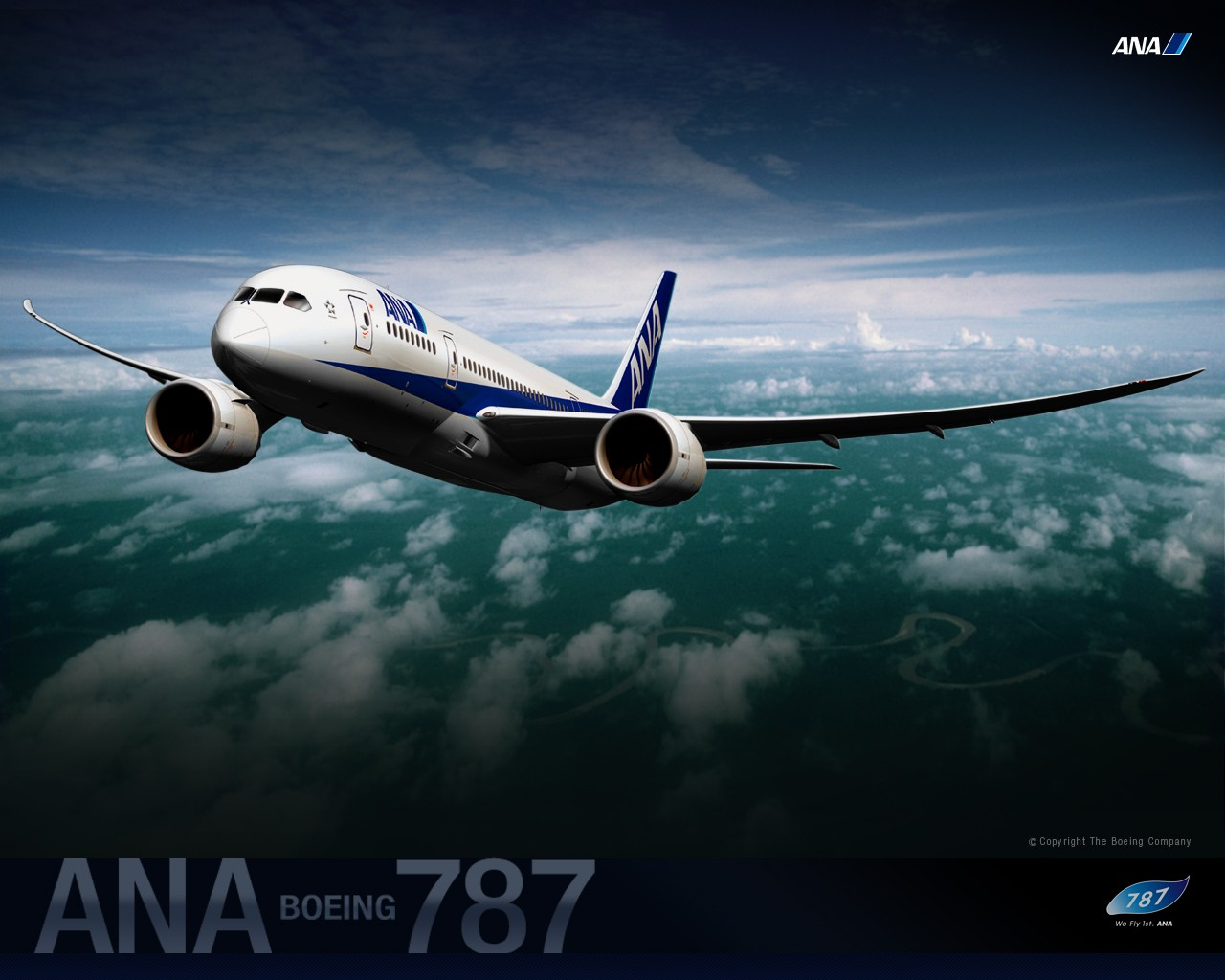 ANA All Nippon Airways Boeing Dreamliner wallpaper 30299