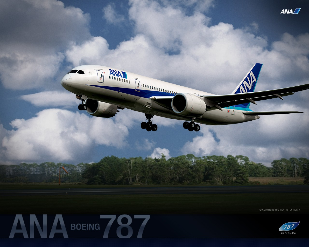ANA All Nippon Airways Boeing Dreamliner wallpaper 30387