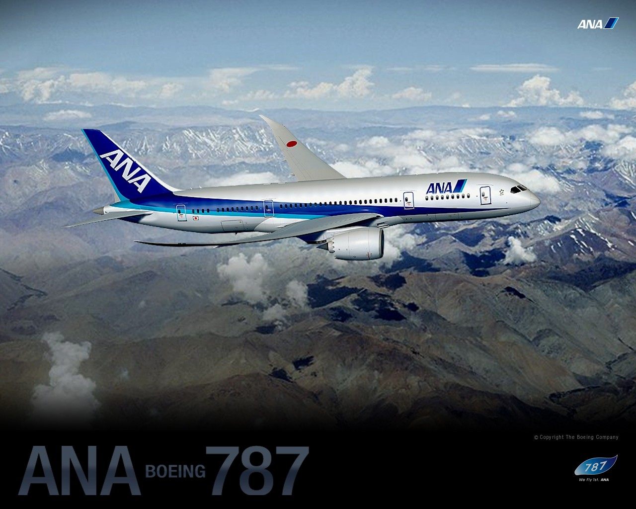 ANA All Nippon Airways Boeing Dreamliner wallpaper 30456