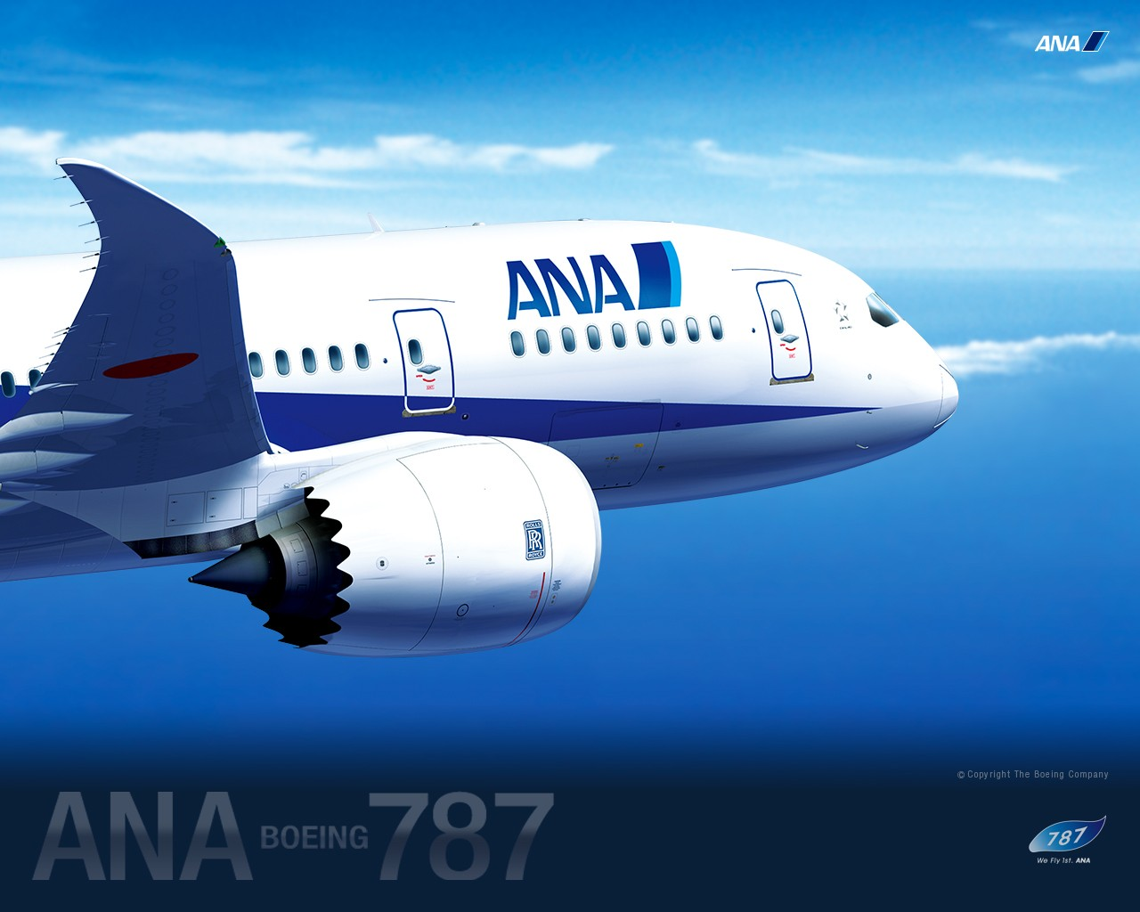 ANA All Nippon Airways Boeing Dreamliner wallpaper 30514