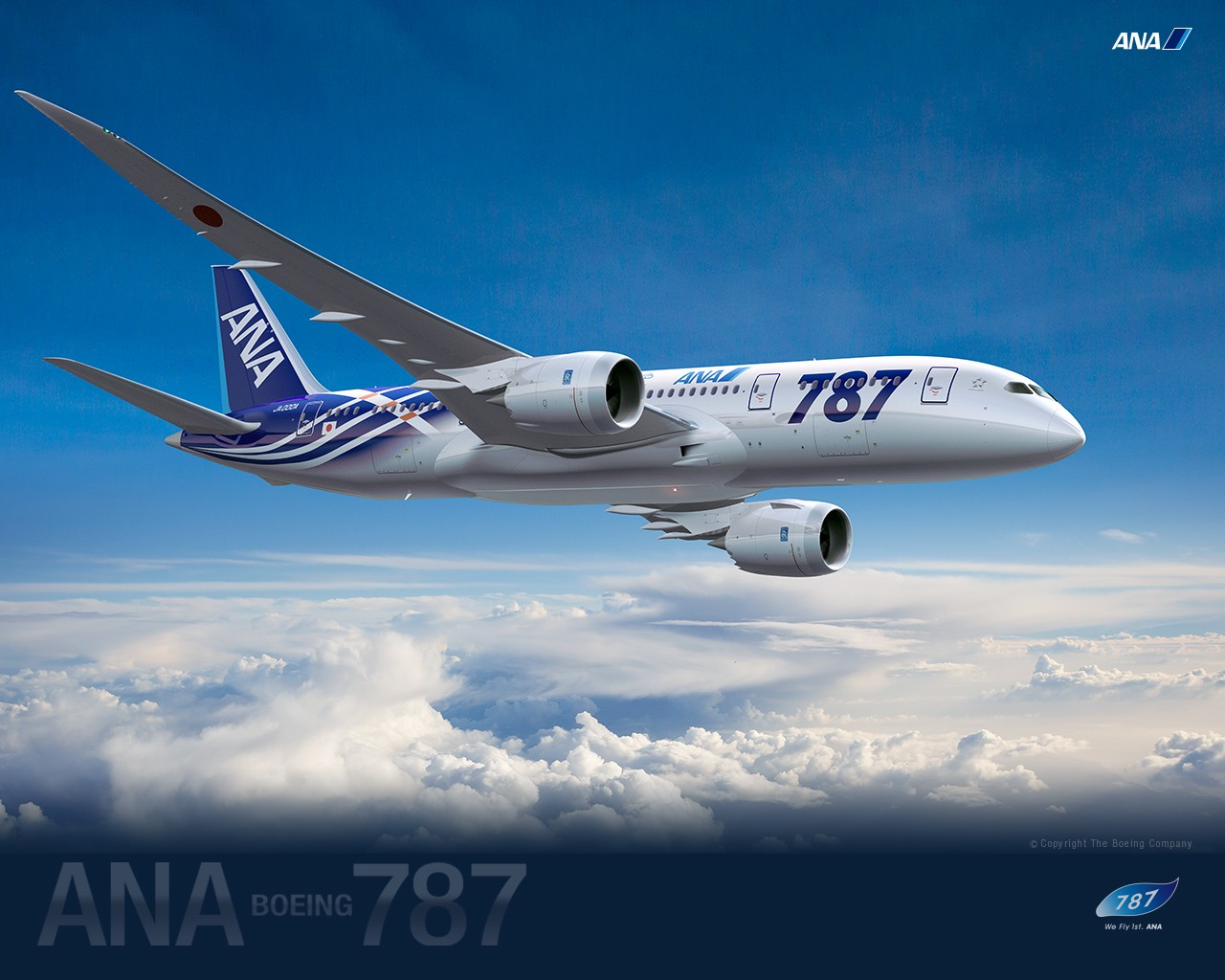 ANA All Nippon Airways Boeing Dreamliner wallpaper 30567