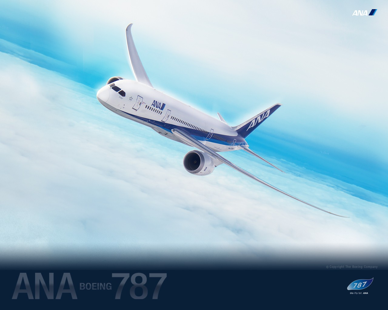 ANA All Nippon Airways Boeing Dreamliner wallpaper 30613