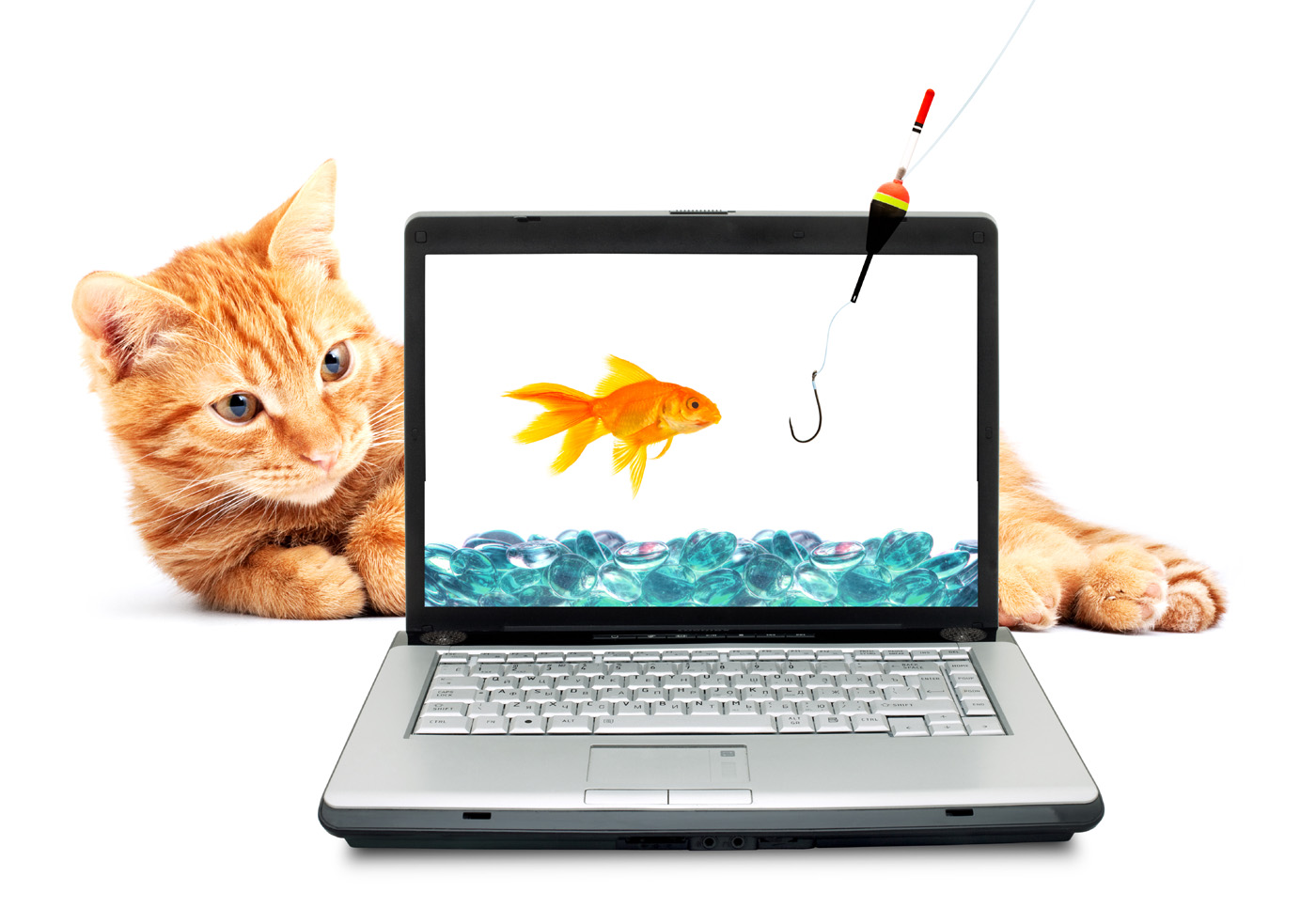 Cat and Goldfish 29206