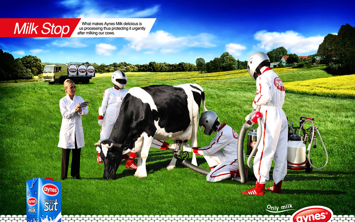 AYNES milk advertising 28748
