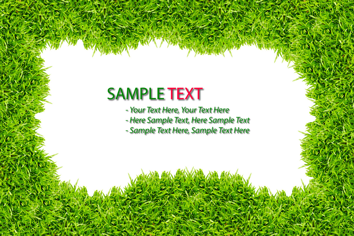 Green grass background 28077