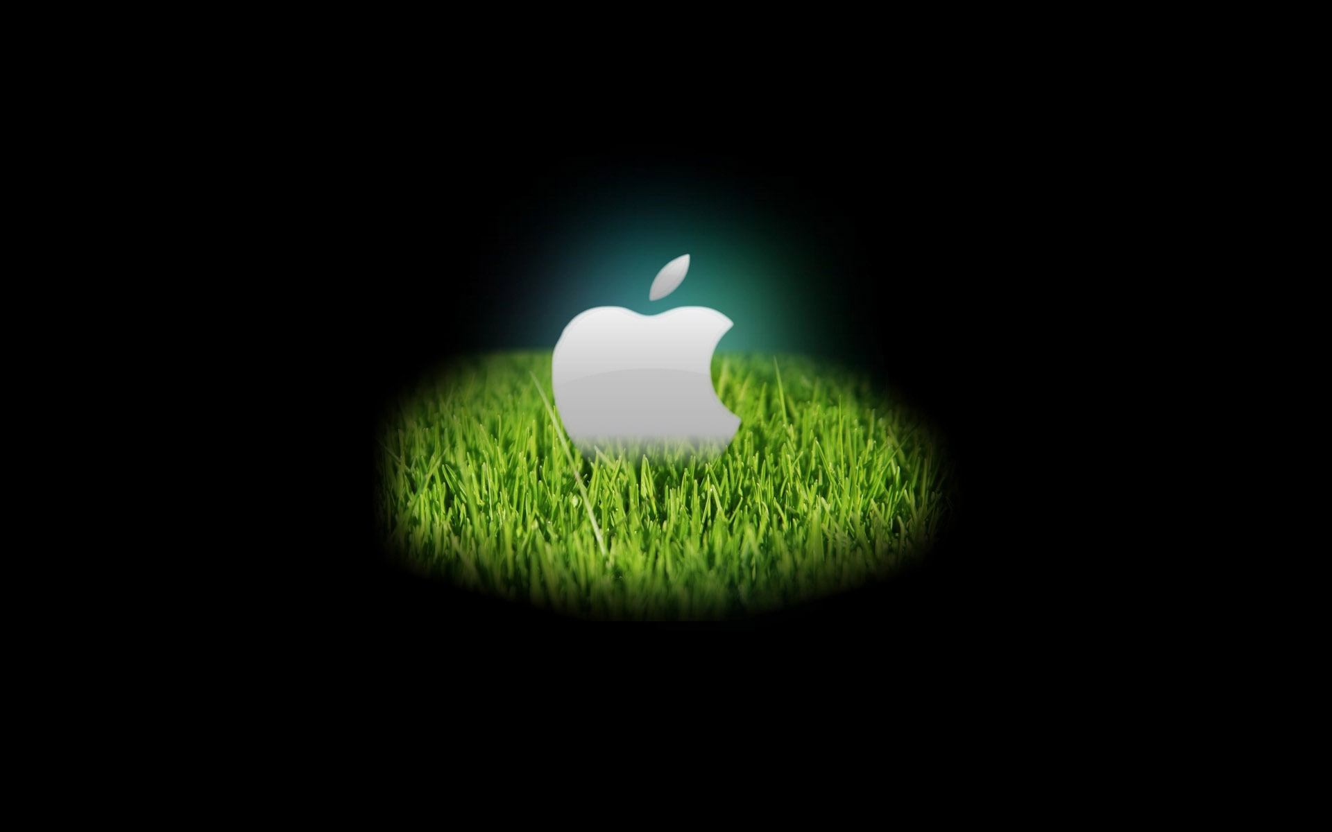 hd apple wallpaper 19349 - desktop wallpapers - system wallpaper