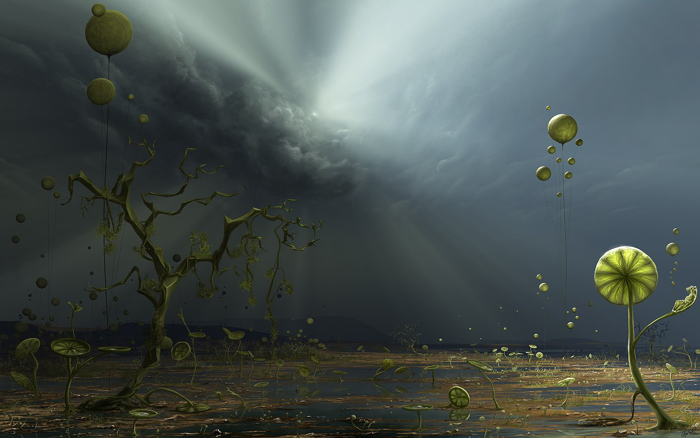 Colos of The Storm wallpaper 23053