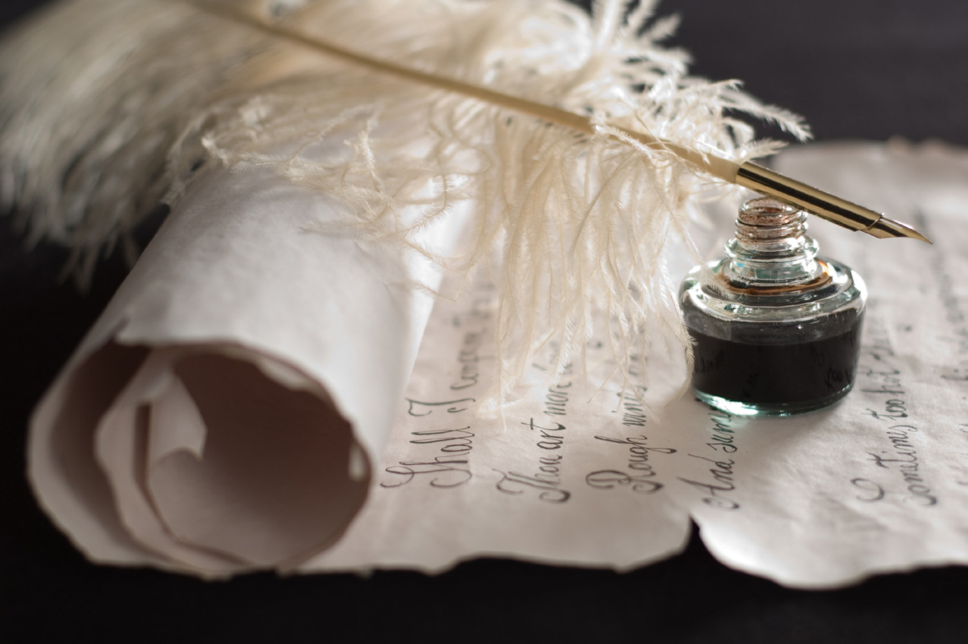 Feather pen and scrolls 6284