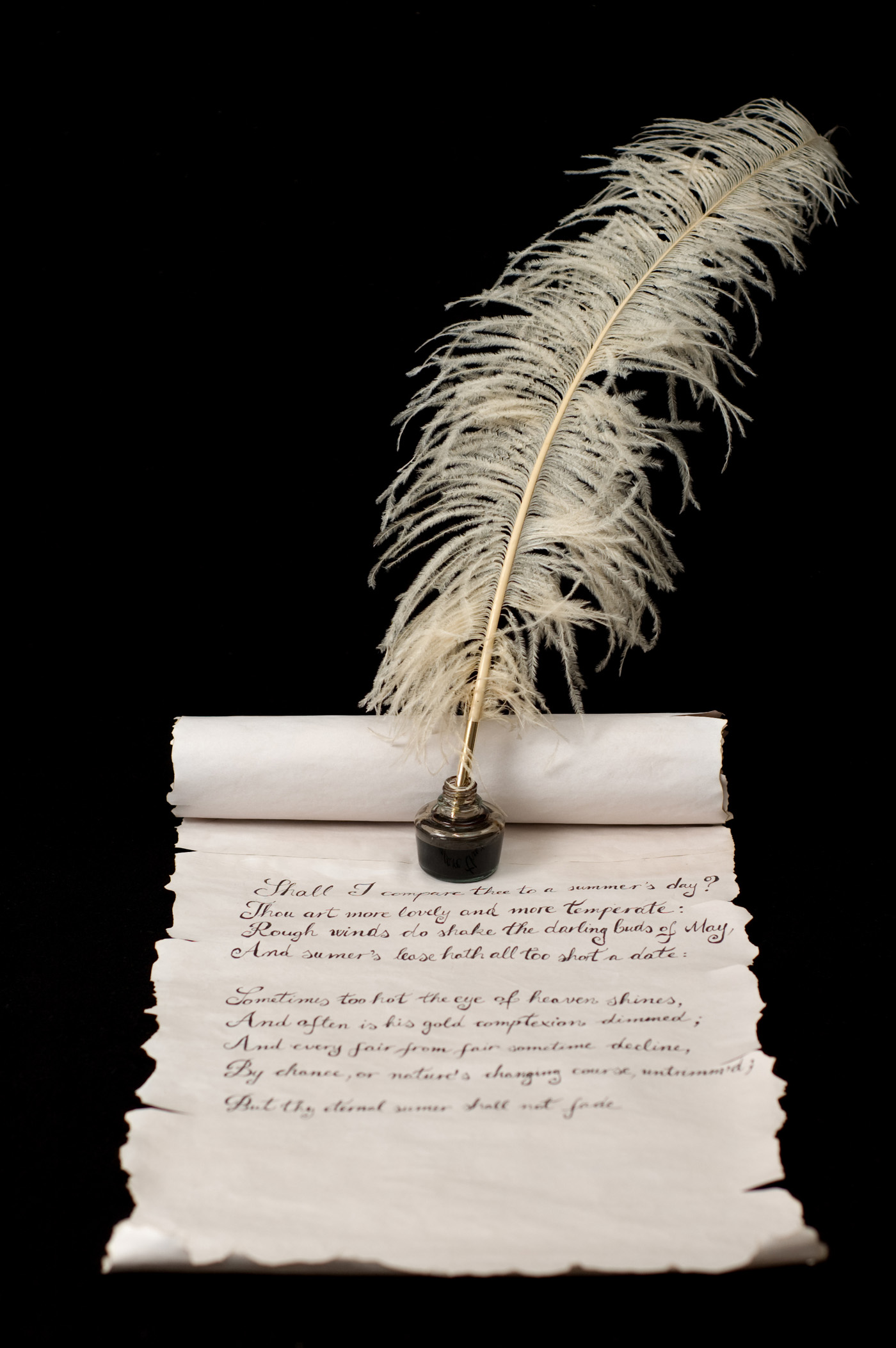 Feather pen and scrolls 6540
