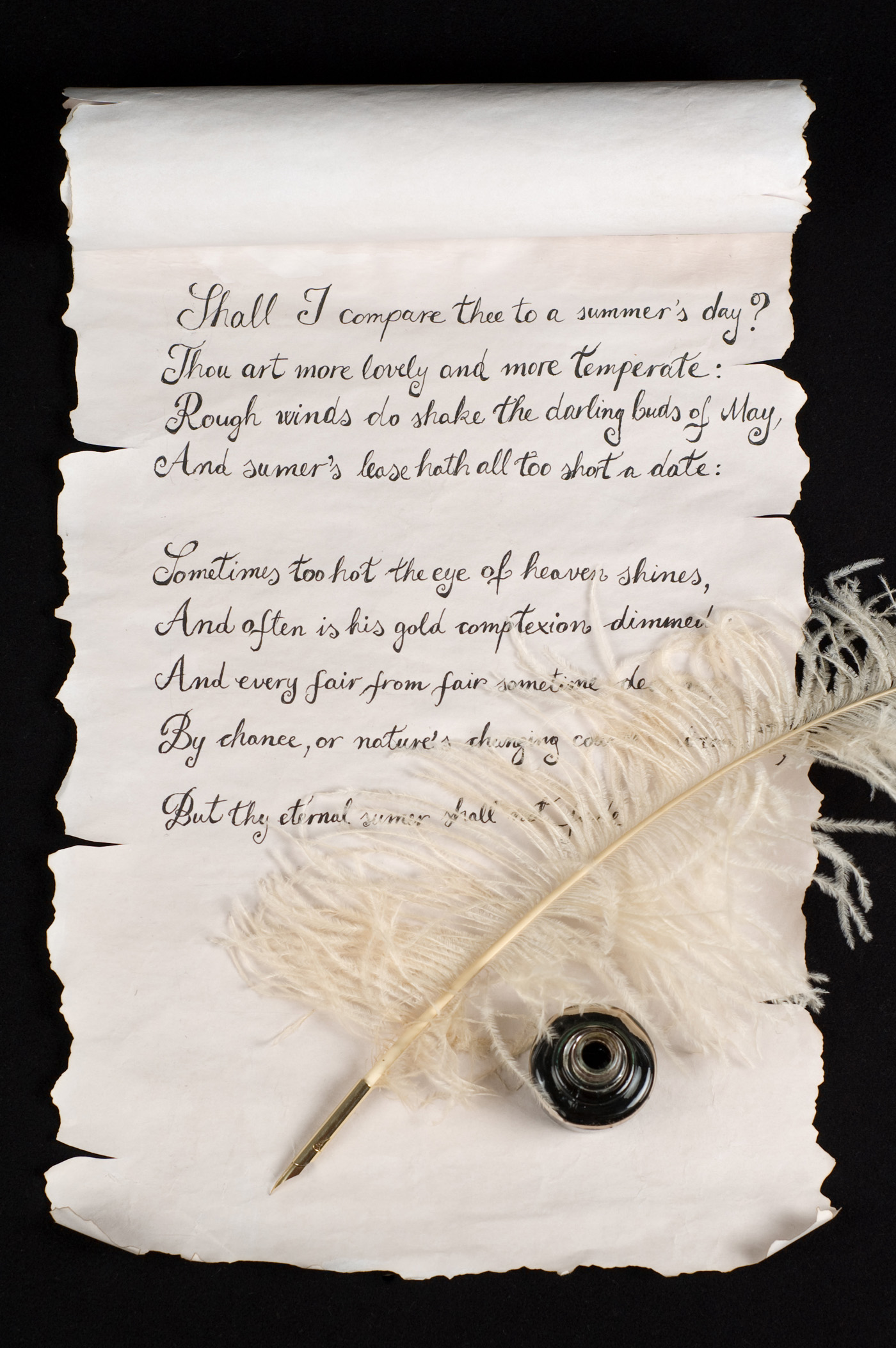 Feather pen and scrolls 6664