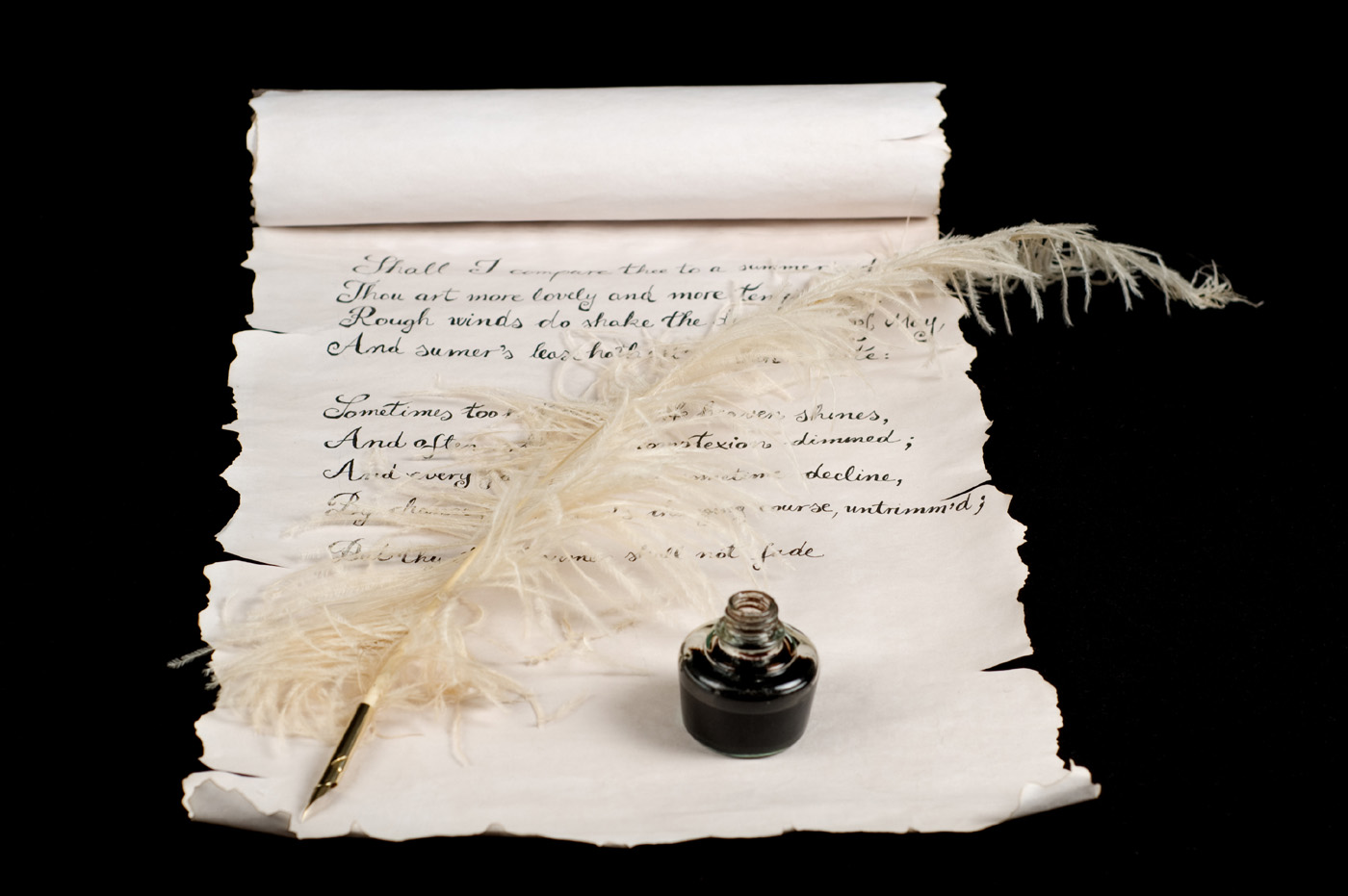 Feather pen and scrolls 6789