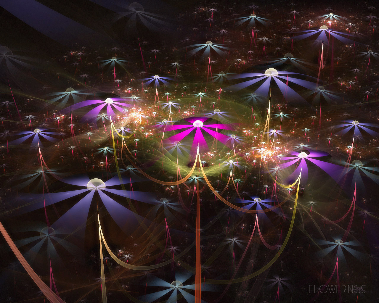 D fantasy abstract flowers 1242