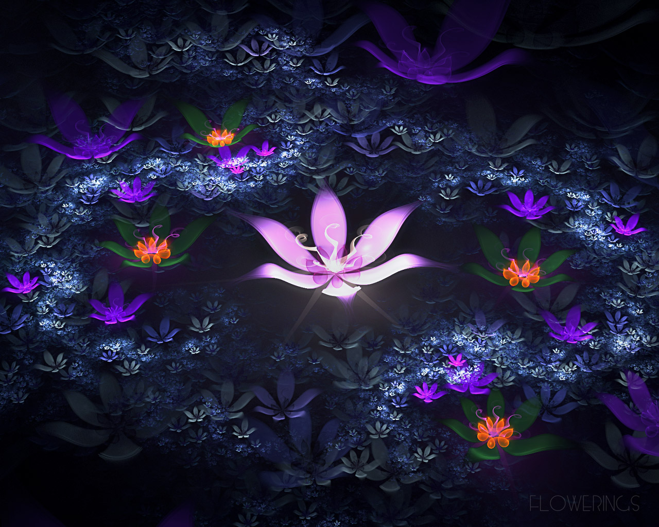 D fantasy abstract flowers 2922