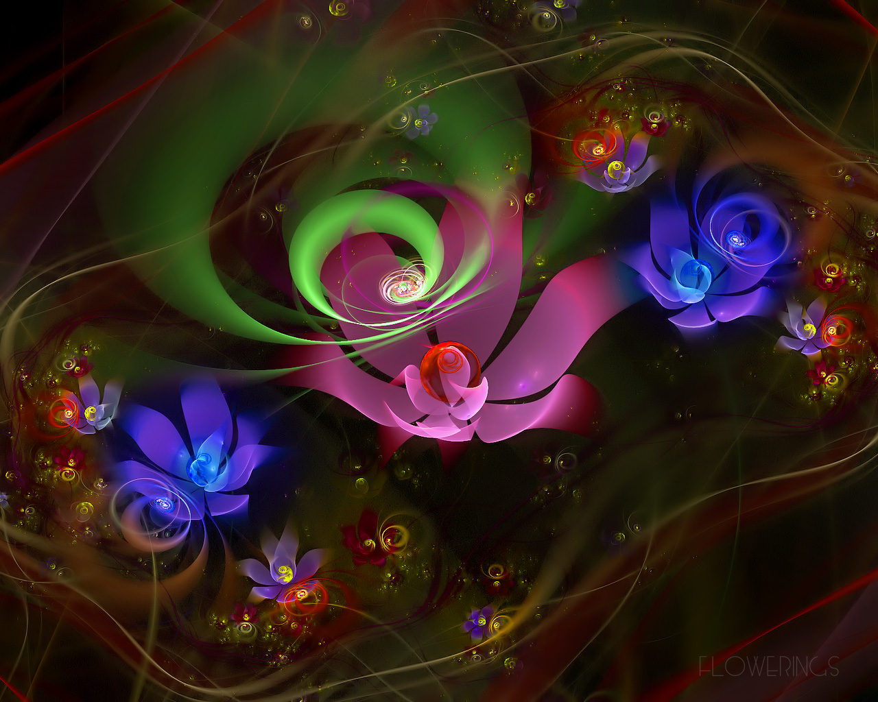 D fantasy abstract flowers 3243