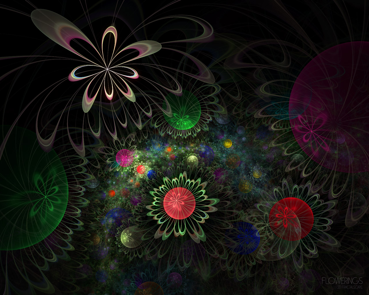 D fantasy abstract flowers 4584