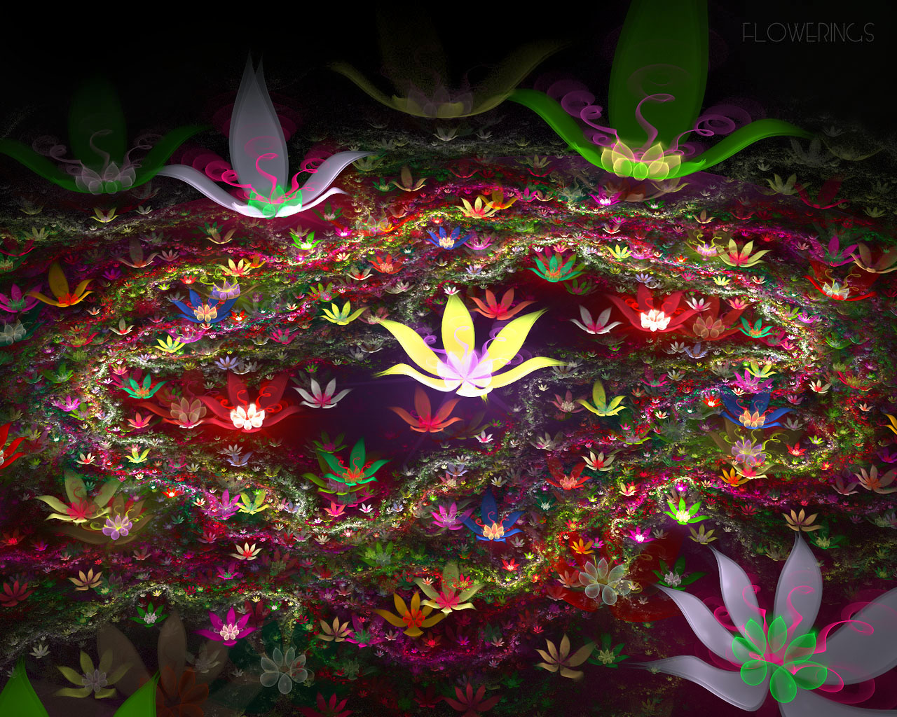 D fantasy abstract flowers 721 - 3D fantasy abstract flowers