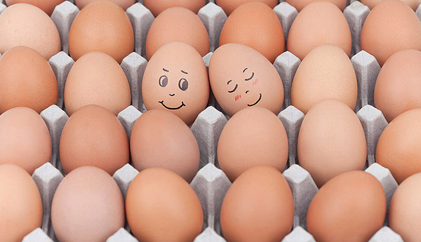 Funny face type cute eggs 11231