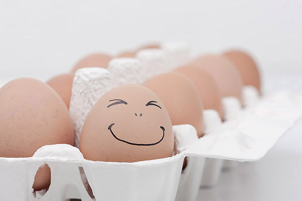Funny face type cute eggs 11499