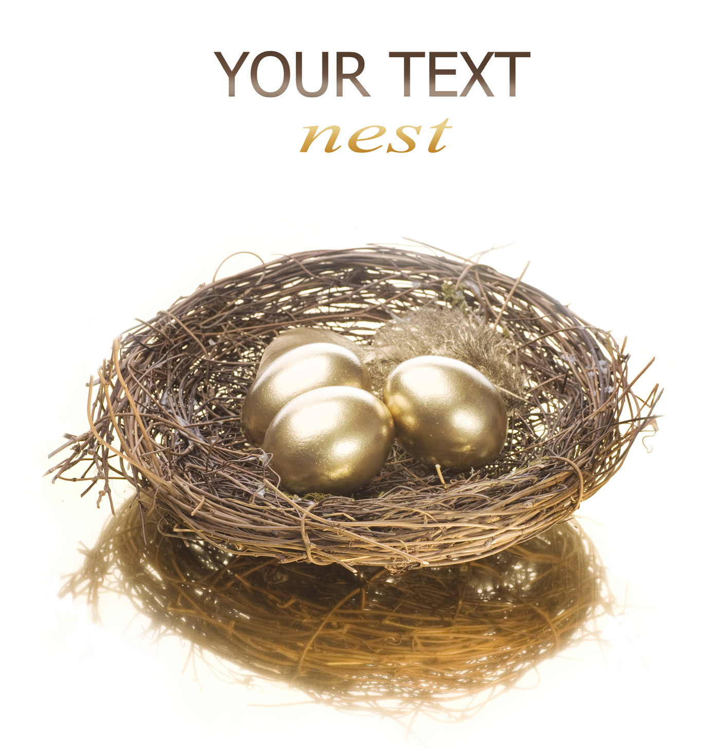 Golden nest egg 29175
