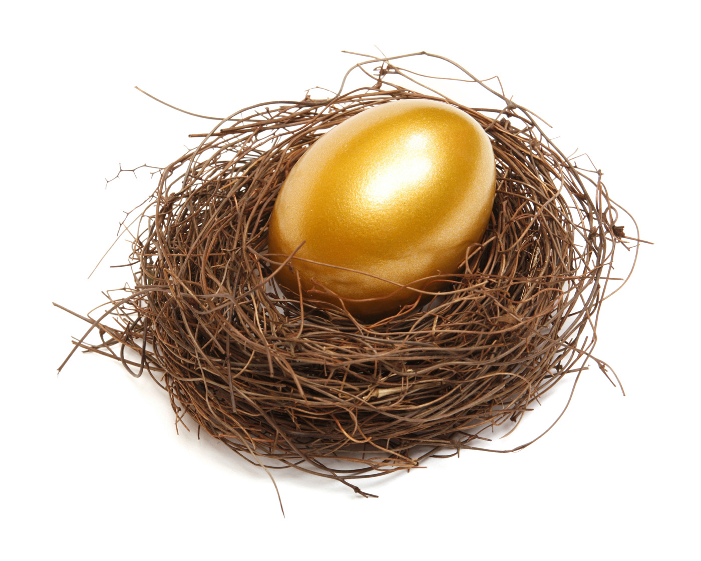 Golden nest egg 29212